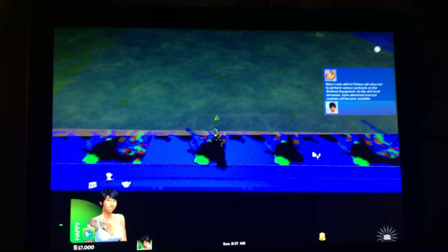 Solved: Sims 4 Screen Glitch - Answer HQ