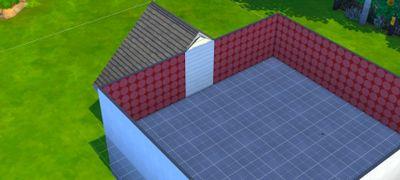 raised roof.jpg