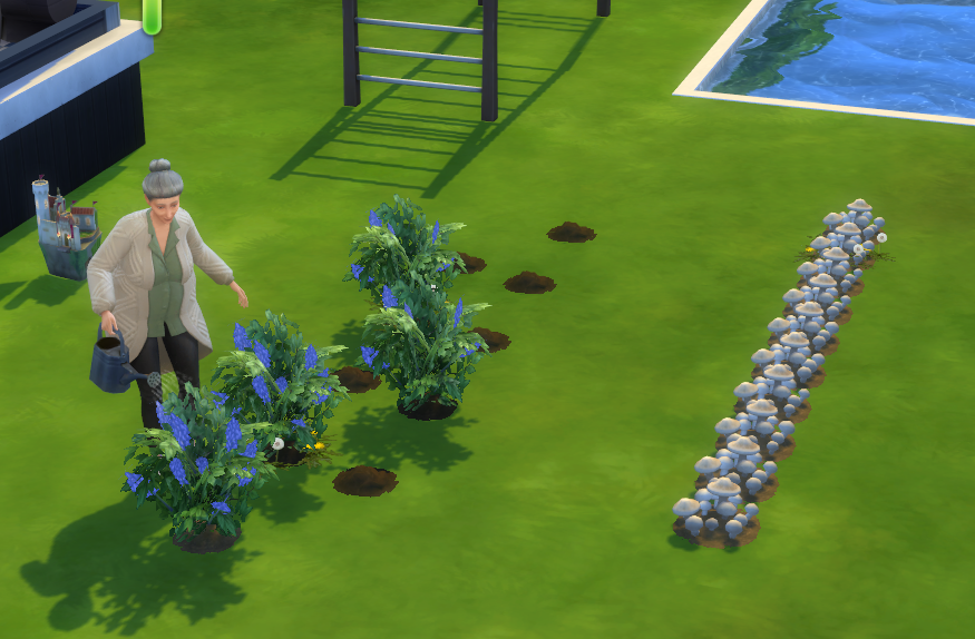 Plants disappearing.png
