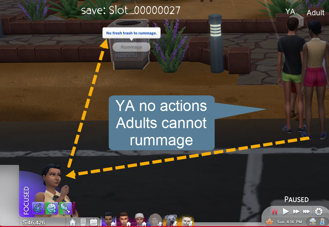 SimsRummage2.jpg