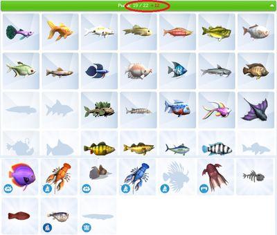 Fishing bug.jpg
