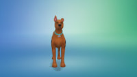 My Sim dog