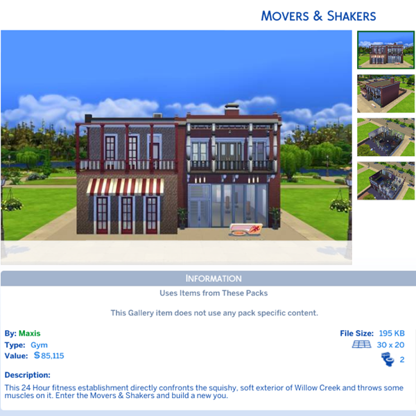 Movers Shakers Gym Gallery.PNG