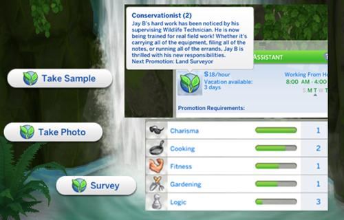 Waterfall Survey 1.PNG