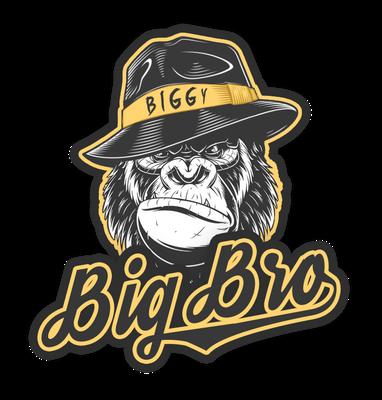 BIGGY_WORK_avec_logo_BBG_PNG_pour_discord.png