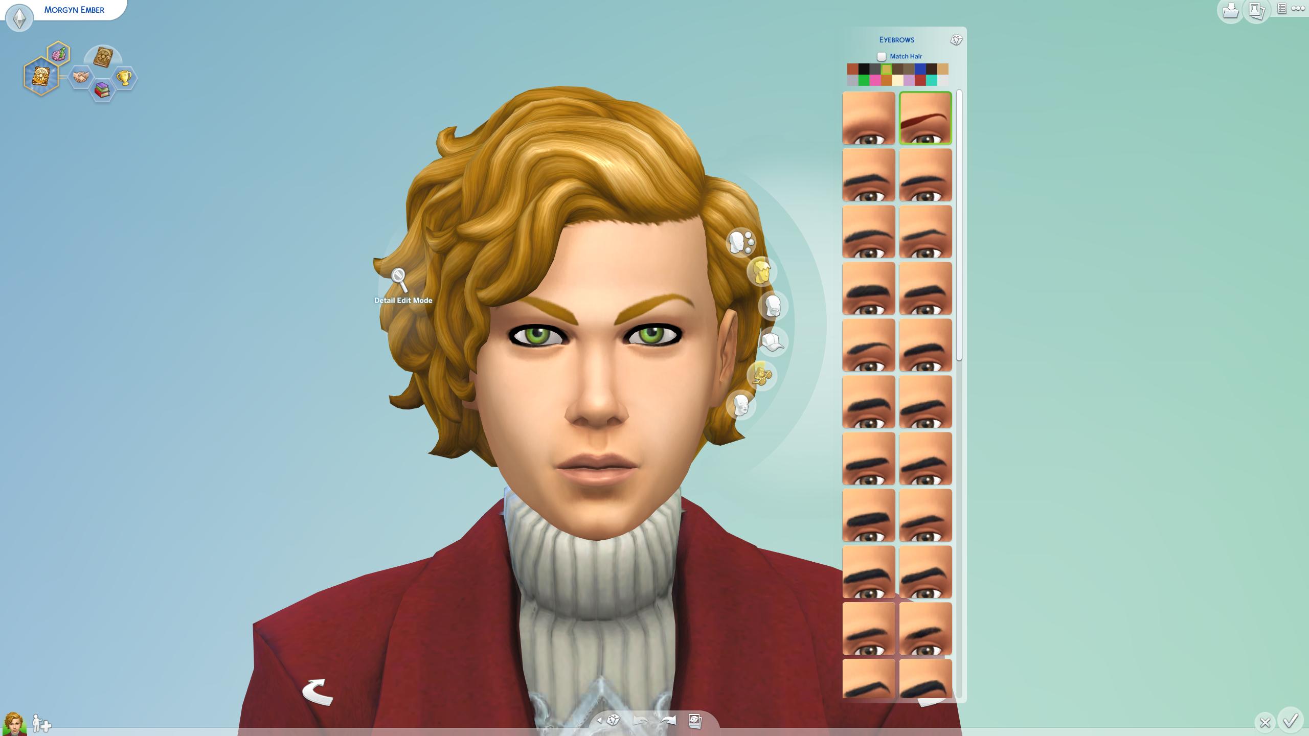 Eyebrow Selection.png