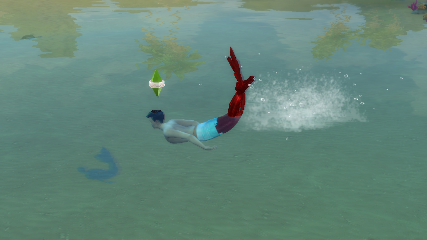When humans Eat Sea Kelp, they get bugs in the water.png