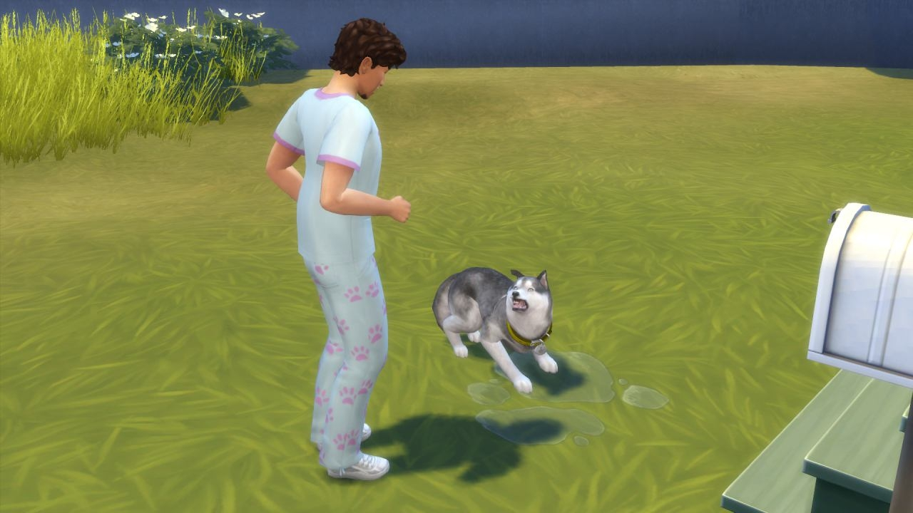 Sims  Cats And Dogs How The Dog Is Feeling