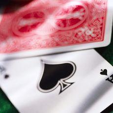 BlackjackWidow